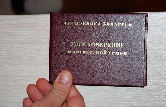 Помощь многодетным семьям в Беларуси