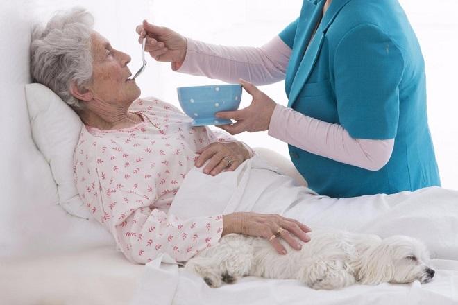 Дома для инвалидов и престарелых