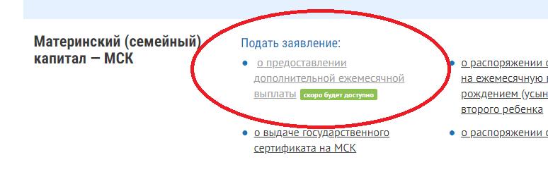 Семьям выплатят по 5000 рублей на каждого ребенка до 3 лет